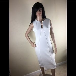 Ivory enfocus studio dress